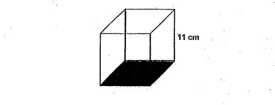 Question Image of The figure below shows a box will a height of 11cm. What is the base area of the box?  .